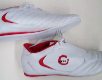 training shoes dragon v model