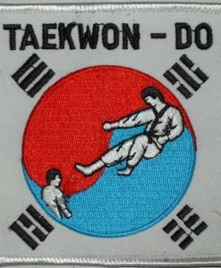 Taekwondo - Kick inside Korean Flag