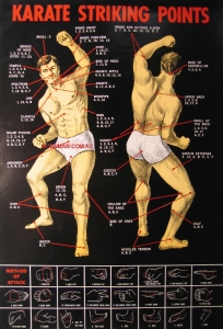 Karate Strike Points Poster