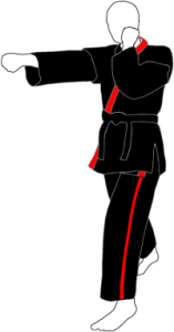 Sempai Gi (Instructor) black