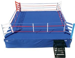 WWMA Boxing ring competition